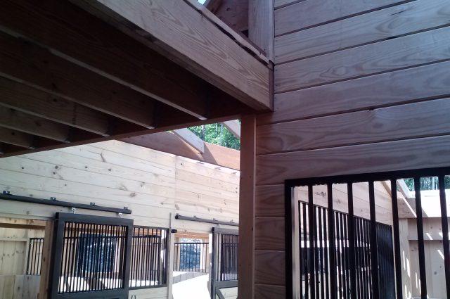 Open Horse Stalls
