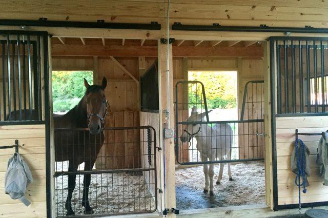 Horse Stalls Leverett, MA