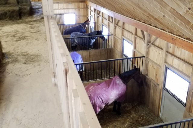horse-barn-stalls
